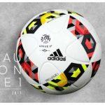 El balón de la Ligue1 2016/17